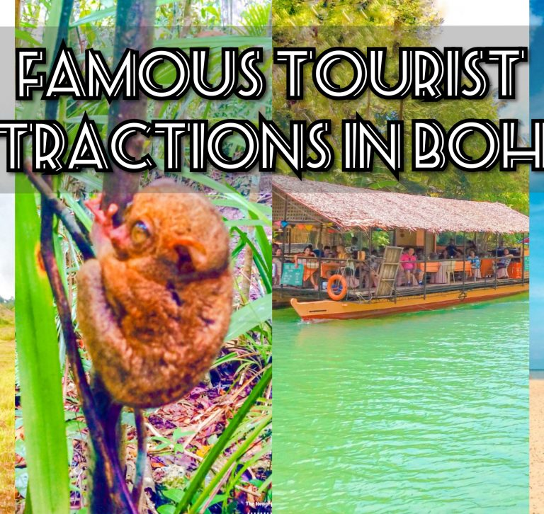 famous tourist attractions in bohol